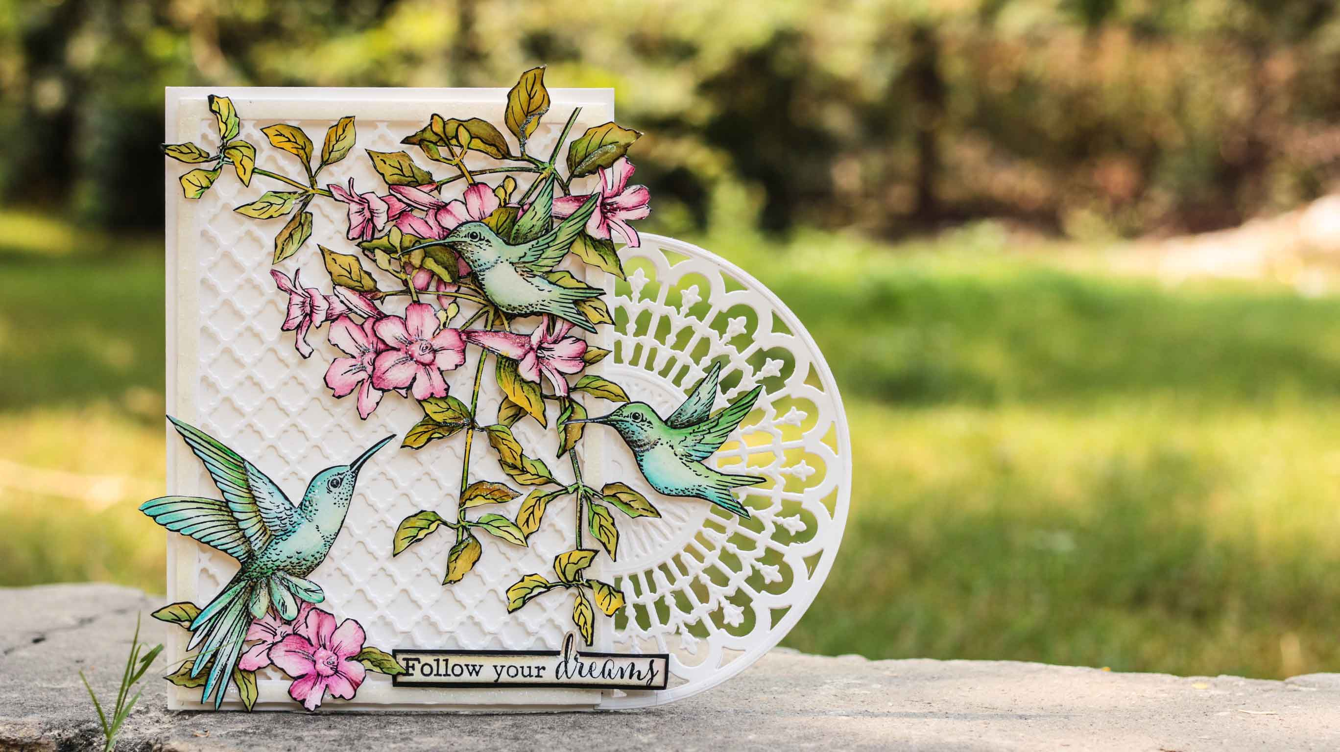 Giveaway by Die Cuts and More (Sponsor no:9)